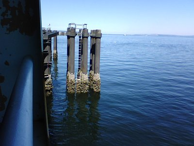 At the Edmonds Ferry Dock
