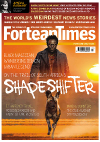 Fortean Times #289