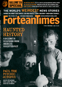 Fortean Times #294