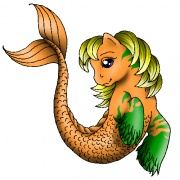 Aqua-Pony