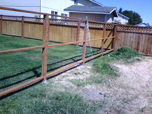 backyard dog fence ideas 25 best ideas about dog fence on pinterest fence ideas diy fence