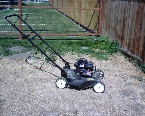 Moby the Mower